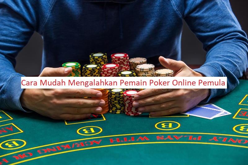 cara mengalahkan pemula poker